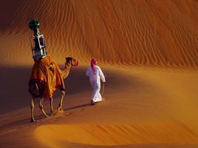 Карты Google делает верблюд