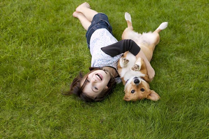 Что общего у детей и собак