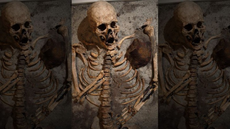 Болгарский Индиана Джонс обнаружил вампира