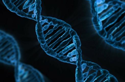 Ученые могут спасти людей от волчьей пасти