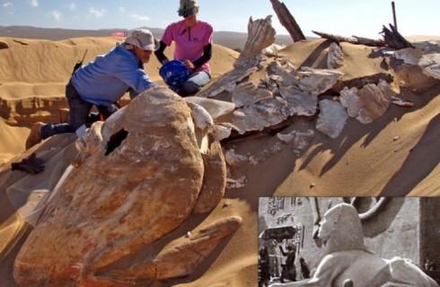 Зачем прятать сфинкса в песке