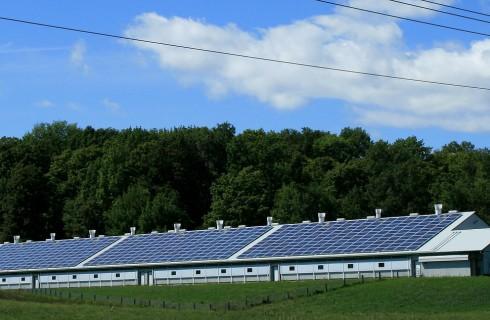 Солнечная энергия и нефть станут равны во всем