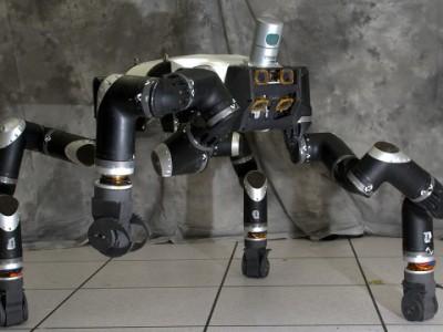 Обезьяны-роботы