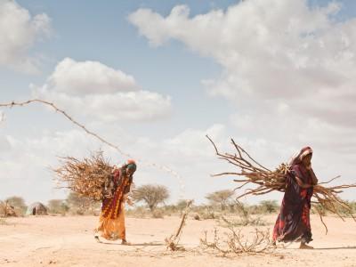 Изменение климата: засуха