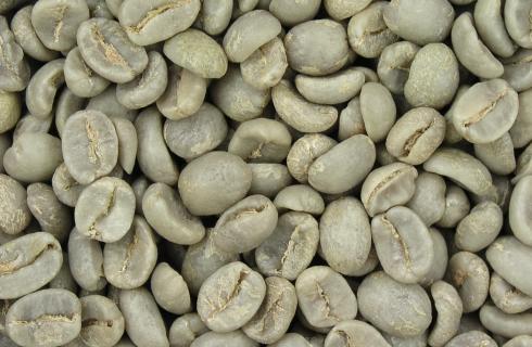 Зеленый кофе оказался анти-волшебным продуктом