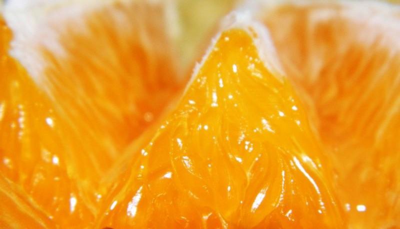Цитрусовый аромат как панацея
