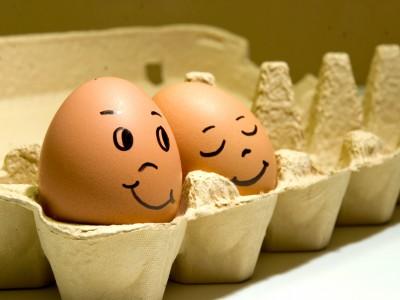 Яйца вернули в сырой вид