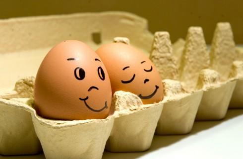Вареные яйца можно вернуть в исходное состояние
