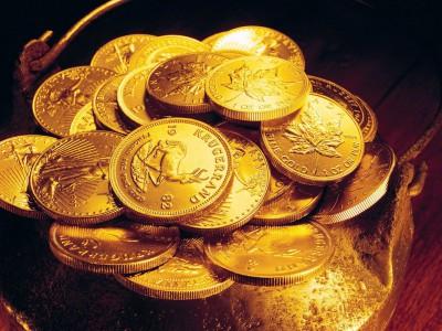 Изделия из золота : монеты