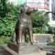 Токио не может забыть Хатико