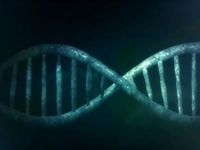 Биологические часы смогут рассказать о жизни и смерти