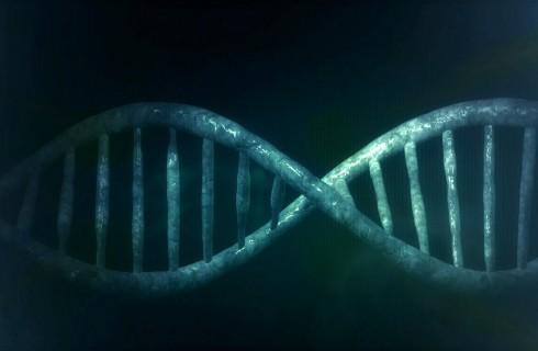 ДНК расскажет о продолжительности жизни