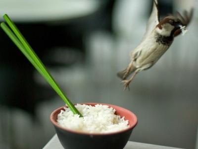 Способ приготовления риса