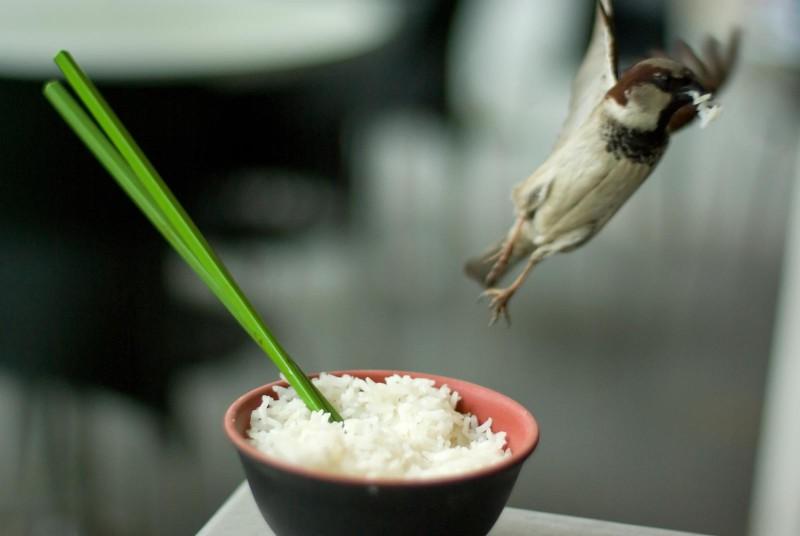 Рис потеряет калории