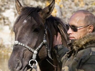 Болезнь Путина активно обсуждается в СМИ