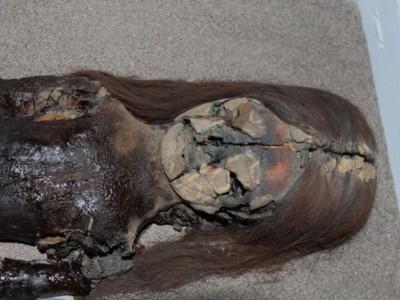 Чилийские мумии Чинчорро