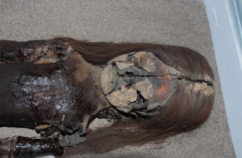 Древние мумии могут исчезнуть