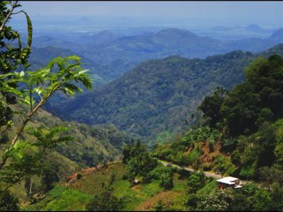 Древние люди в Шри-Ланке нашли способ выжить