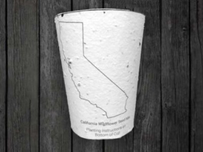 Plantable Coffee Cup