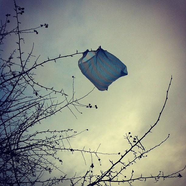 Евросоюз откажется от пластиковых пакетов