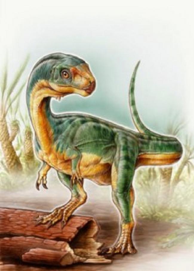 Родственник T. Rex оказался вегетарианцем