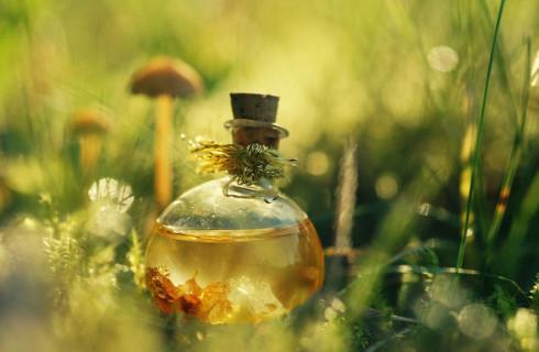 Во Франции придумали духи с человеческим запахом