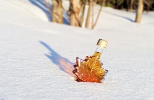 Ученые выявили неожиданные свойства кленового сиропа