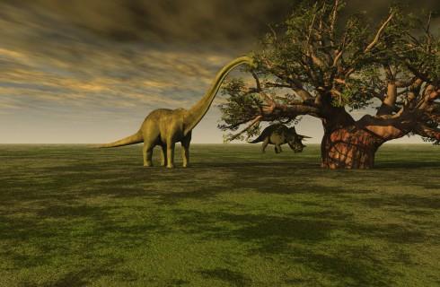 Бронтозавров вернули в ряды динозавров