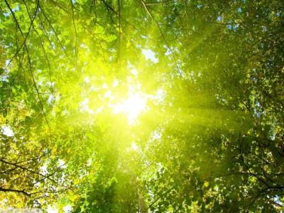 Светодиодный аппарат лечит глаза солнечным светом