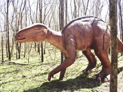 Фрагменты скелета динозавра помогут восстановить историю