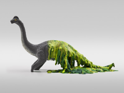Динозавров в тропиках не было