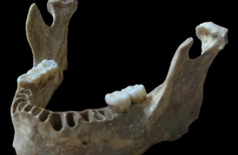 Неандертальцы есть в каждом современном человеке
