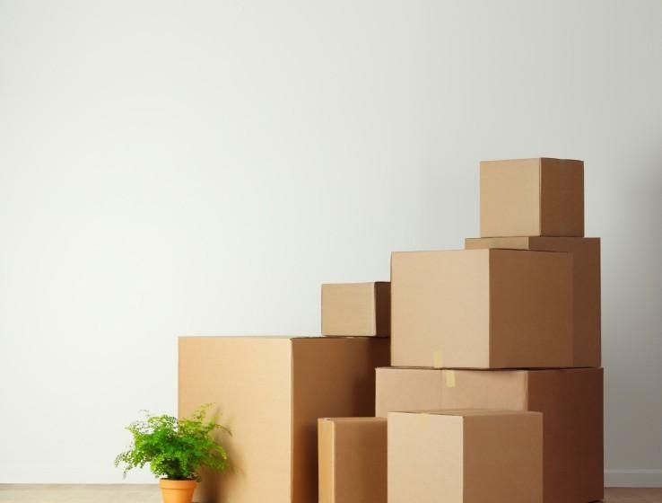 Комфортная транспортировка и сборка мебели с компанией «Деликатный переезд»
