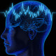Учеба уничтожает мозг
