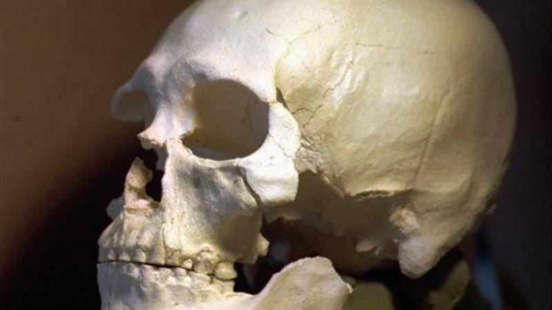 Зуб рассказал о древней стоматологии