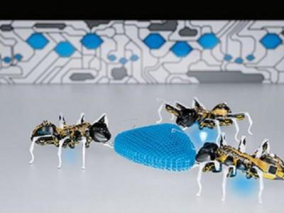 Роботы-муравьи