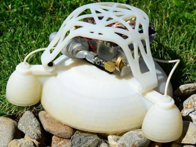 Робот-лягушка