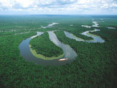 Ресурсы Земли . Леса Амазонки