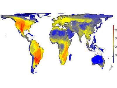 Карта мира без человека