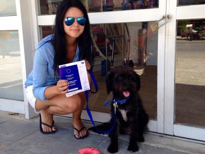 Собака спасла девушку. Джорджия Брэдли и Пеппер