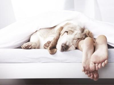 Температура для сна должна быть оптимальной