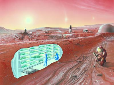 Колонизаторы Марса