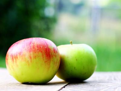 Дети любят яблоки