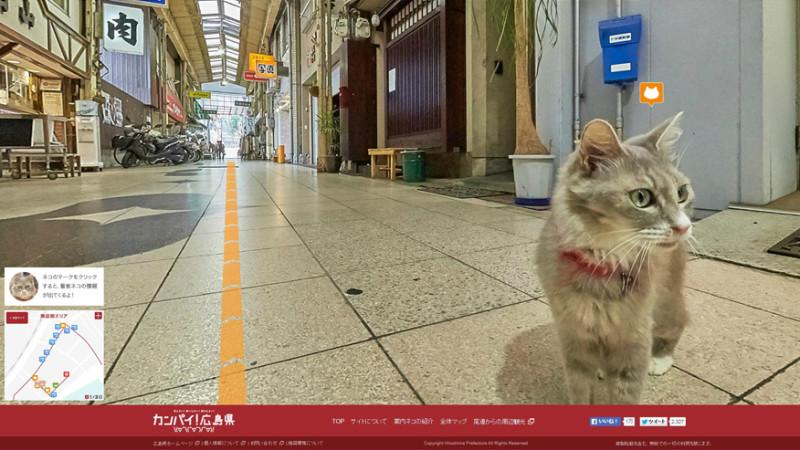 Япония глазами кошек