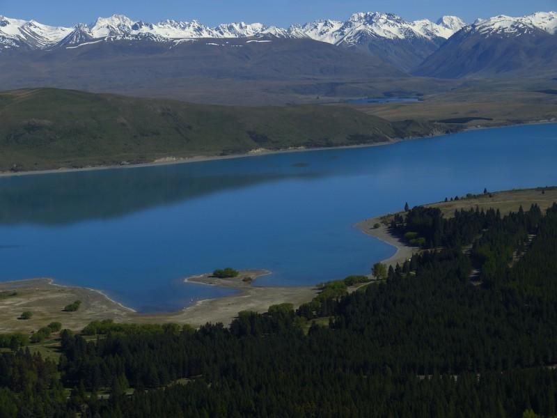 Новая Зеландия снова позаботится о морских жителях
