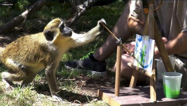 Рисунки животных спасают мир