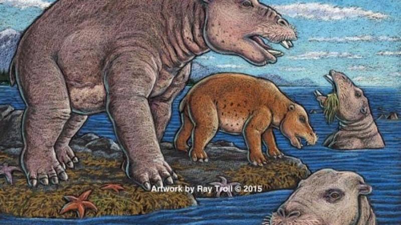 Первыми пылесосами были носороги