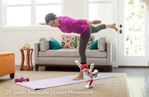 Роботы-гуманоиды поселятся в каждом доме