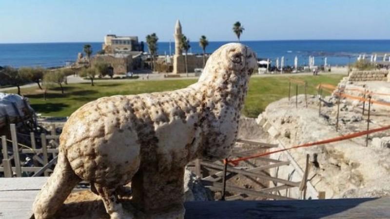 В Израиле обнаружили древнего барана