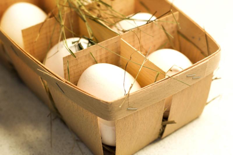 Яйца не опасны для здоровья людей